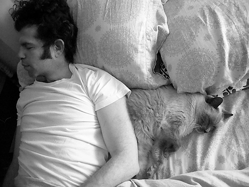 sleep apnoea sleep apnea